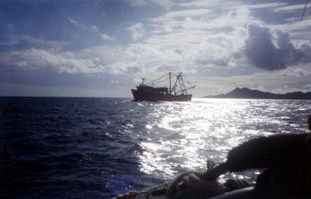 L'ombre de Margarita dans la calmasse, dans quelques heures la baleine joueuse prendra la place du chalutier.